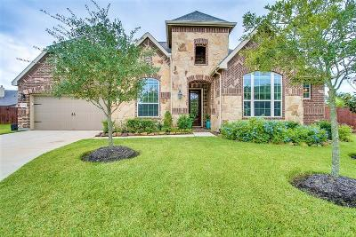 Lakes Of Savannah Single Family Home For Sale: 13306 Meridian Heights Court