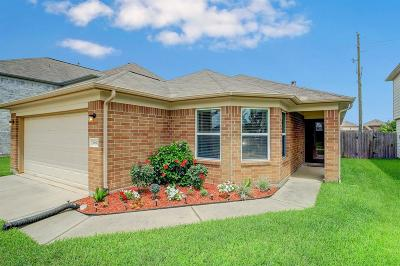 Katy Single Family Home For Sale: 20642 Ricewood Village Trail