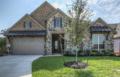 Katy Single Family Home For Sale: 25003 Bridgeton Meadow Lane
