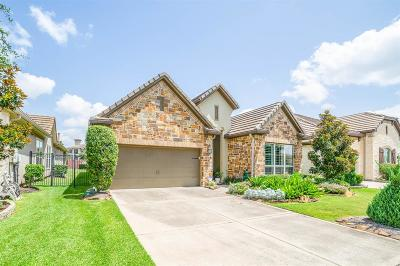 Riverstone Single Family Home For Sale: 4815 Fairford Drive