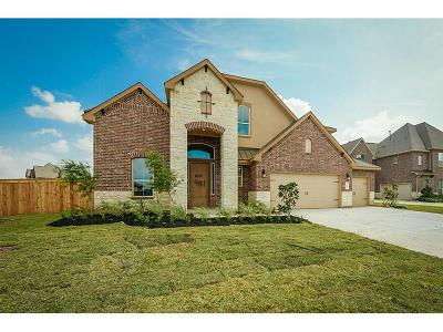 Manvel Single Family Home For Sale: 4401 Red Eagle Pass Lane