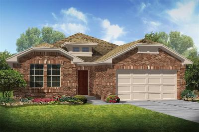 League City Single Family Home For Sale: 1640 Canchola Lane