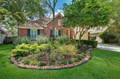 The Woodlands Single Family Home For Sale: 179 S Delta Mill