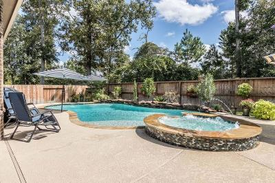 New Caney Single Family Home For Sale: 23474 Fauburg Drive