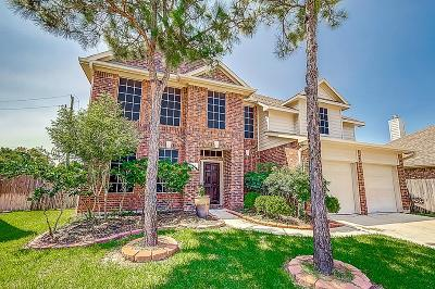Tomball Single Family Home For Sale: 19307 Cloud Peak Drive