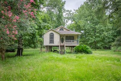 Single Family Home For Sale: 199 Mountain