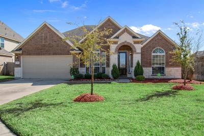 Tomball Single Family Home For Sale: 13207 Edison Trace Lane