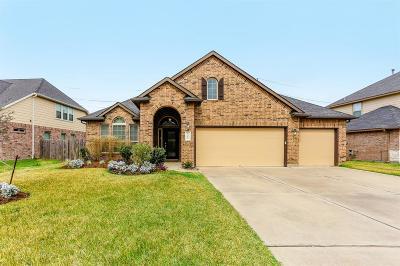 Rosenberg Single Family Home For Sale: 9303 Turnbull Lane