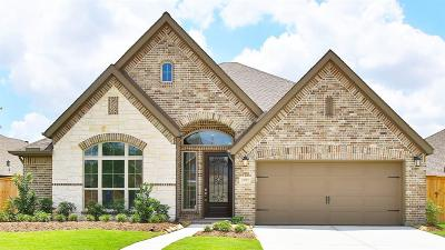 Katy Single Family Home For Sale: 23719 Daintree Place