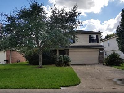 Houston Single Family Home For Sale: 18311 Thicket Grove Road