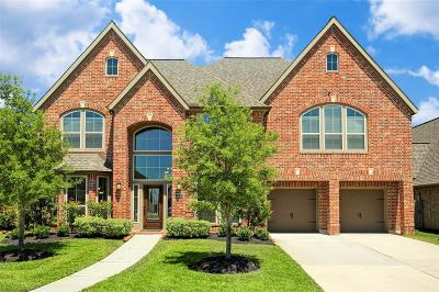 Pearland Single Family Home For Sale: 3005 Catalpa Rock Court