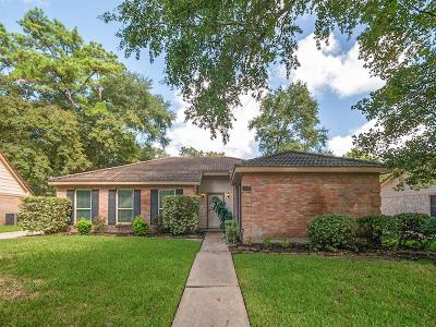 Houston Single Family Home For Sale: 3615 Haven Pines Drive