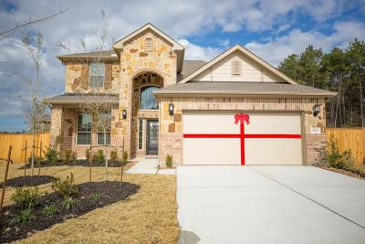 Conroe Single Family Home For Sale: 2963 Twin Cove Court