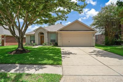 Sugar Land Single Family Home For Sale: 17107 Fairway Glen Court