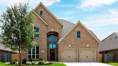 Pearland Single Family Home For Sale: 13608 Canyon Ranch Drive