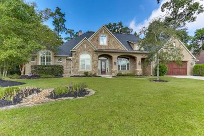 Spring Single Family Home For Sale: 5567 Bright Timber Landing Drive