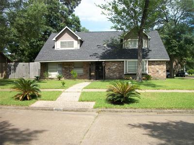 Houston Single Family Home For Sale: 223 Blue Castle Lane