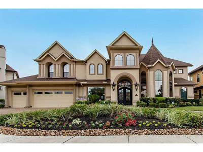 Sugar Land Single Family Home For Sale: 607 Plumbridge Lane