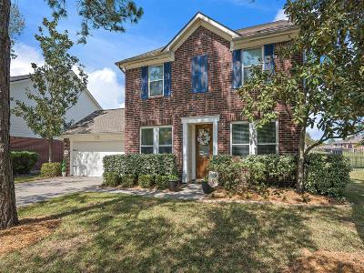 Houston Single Family Home For Sale: 16826 Coralbend Drive