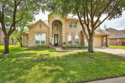 Houston Single Family Home For Sale: 12007 Canyon Mills Drive