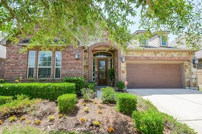 Sugar Land Single Family Home For Sale: 1715 1715 Ralston Branch Way Way