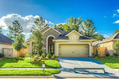 Montgomery Single Family Home For Sale: 213 Southern Iris Ct