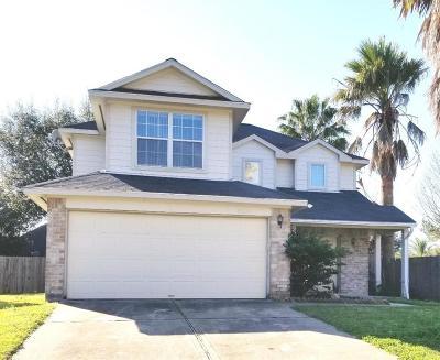 Katy Single Family Home For Sale: 18619 Tree Lark Lane