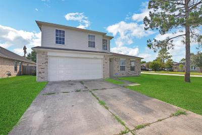 Pearland Single Family Home For Sale: 3402 NE Wheatmeadow Lane