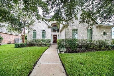 Friendswood Single Family Home For Sale: 316 Overlook Drive