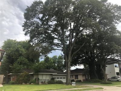 Bellaire Single Family Home For Sale: 4915 Holt Street