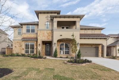 Spring Single Family Home For Sale: 20146 E Hachita Circle