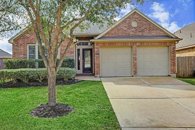 Pearland Single Family Home For Sale: 13310 Highland Lake Lane