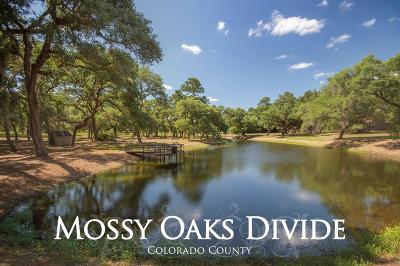 Colorado County Farm & Ranch For Sale: 1069a Mossy Oaks Lane