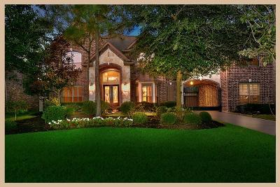 The Woodlands Single Family Home For Sale: 19 N Fair Manor Circle