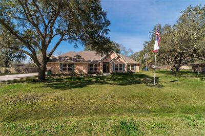 Pearland Single Family Home For Sale: 2506 Mary Avenue