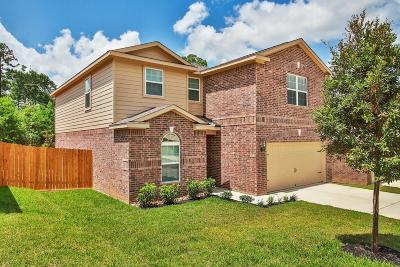 Conroe Single Family Home For Sale: 7658 Dragon Pearls Lane