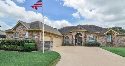 Katy Single Family Home For Sale: 6807 Patricia Lane