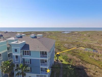 Galveston Condo/Townhouse For Sale: 26501 Mangrove Drive #101