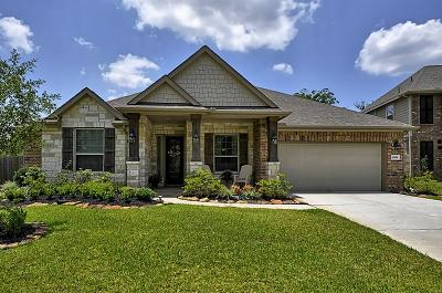 New Caney Single Family Home For Sale: 18818 Newberry Forest Drive
