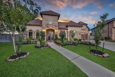 Sugar Land Single Family Home For Sale: 4707 Chandler Creek Court