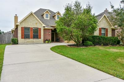 Tomball Single Family Home For Sale: 11106 Arthurian Dream Court