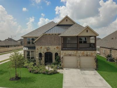Katy Single Family Home For Sale: 23303 S Briarlilly Park Circle