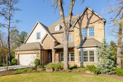 Montgomery Single Family Home For Sale: 106 Sanderling Lane