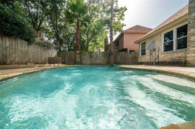 Houston Single Family Home For Sale: 15619 Fern Ridge Drive
