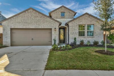 Spring Single Family Home For Sale: 21113 Verismo Drive