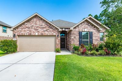Humble Single Family Home For Sale: 5911 Rivergrove Park Drive