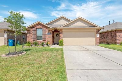 Houston Single Family Home For Sale: 16439 Lazo Canyon Way