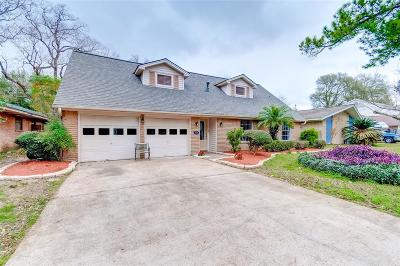 Houston Single Family Home For Sale: 127 Outlook Drive