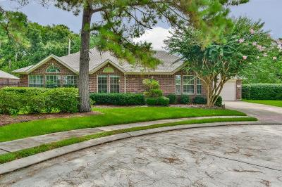 Friendswood Single Family Home For Sale: 521 Pine Ridge Court