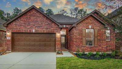 Single Family Home For Sale: 3957 Eagle Nest Lake Lane
